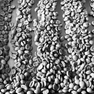 3G COFFEE ROASTERS(サンジーコーヒー)、3時の珈琲プロジェクト